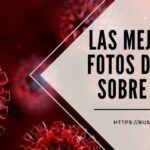 Las MEJORES 15 fotos del 2020 sobre COVID